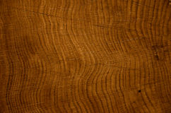 Oak tree rings background Royalty Free Stock Image