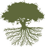 Oak Tree Roots. Silhouette of an oak tree with big strong roots vector illustration