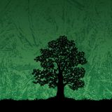 Oak tree silhouette on abstract background Stock Photo