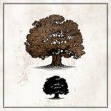 Oak tree. Stand alone on light background stock illustration