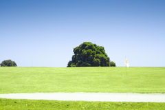 Oak tree  standing alone in a field Royalty Free Stock Photo