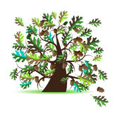 Oak tree, summer. Vector illustration vector illustration