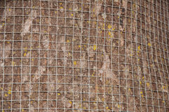 Oak tree trunk covered with hardware cloth Stock Photography