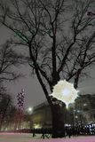 Oak tree on Tverskoy boulevard in Moscow, a natural monument more than 200 years old. It is also called Pushkin`s oak. Color night winter photo Royalty Free Stock Image