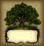 Oak tree wih a banner. Raster version of  old-fashioned banner with fairy-tale rooted oak tree Royalty Free Stock Images