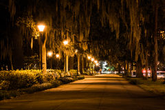 Oak trees and path at night in Forsyth Park, Savannah, Georgia. Royalty Free Stock Photos