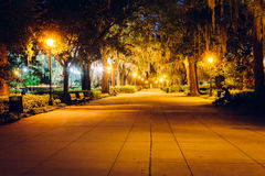 Oak trees and path at night in Forsyth Park, Savannah, Georgia. Stock Photography