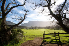Country Meadow Noordhoek Royalty Free Stock Photography