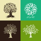 Oak trees silhouette set Royalty Free Stock Image