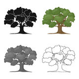 Oak vector icon in cartoon style for web Royalty Free Stock Photography