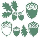 Oak. Vector illustration (EPS 10 Stock Images