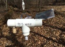 Oak Wilt beetle trap Stock Photo