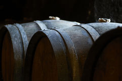 Oak wine barrel in wine cellar with soft light Stock Images