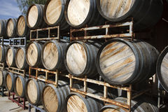 Oak wine barrels Stock Photos