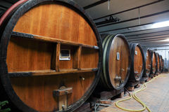 Oak wine barrels in a wine cellar Stock Photo