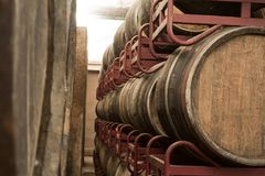Oak  wine barrels in winery Stock Images