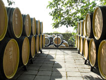 Oak wine casks Stock Photo