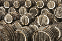 Oak wine casks. A lot of oak wine casks with madeira wine while maderization on solarium Stock Photography