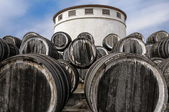 Oak wine casks on winery. A lot of oak wine casks with madeira wine while maderization on solarium on blue clean a bit cloudy sky background Royalty Free Stock Photos