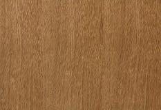 Oak wood background Stock Image