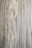 Oak wood board Stock Photography