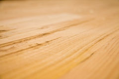 Oak wood. Detail and macro royalty free stock photo