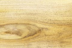 Oak wood details  Royalty Free Stock Photography
