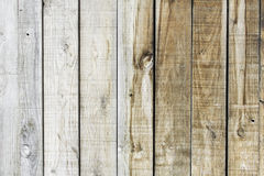 Oak wood Stock Images