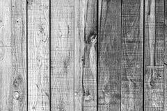 Oak wood Royalty Free Stock Photography