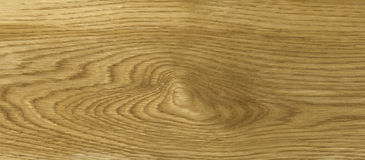 Oak wood texture Stock Images