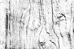 Oak wood texture filled with cracks and knots, design wooden background for overlay stock images