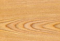 Oak Wood Texture, Natural Wood Textures, High Resolution Texture Royalty Free Stock Photography