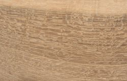 Oak wood texture Stock Image