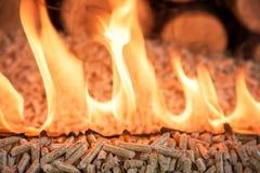 Oak wooden biomass in flame. Burning pellets - oak wooden biomass in flame stock image