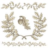 Oak wreath and dividers stock illustration