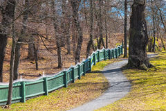 Oakforest with fence in spring. Trail in the oakforest with a wooden fence in spring - Waldermarsudde, Stockholm, Sweden Stock Image