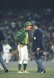 Oakland Athletics kierownik Billy Martin fotografia royalty free