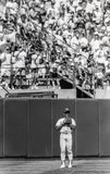 Oakland Athletics legend Rickey Henderson. #24. Image taken from b&w negative royalty free stock photos
