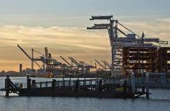 oakland port Royaltyfri Fotografi