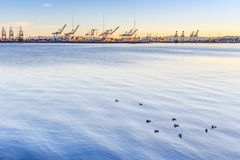 Oakland port. Port of Oakland as seen from Emeryville, California. San Francisco Bay Royalty Free Stock Photography