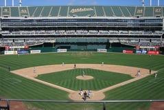 Oaklands McAfee Park Lizenzfreie Stockfotos