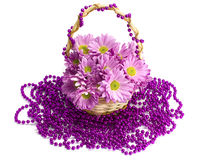 Oaklets in a basket on a beads. On the white isolated background Royalty Free Stock Photo