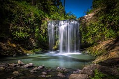 Oakley Creek Waterfall, Auckland, Nouvelle-Zélande Images stock