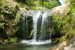 Oakley Creek Waterfall Auckland, Nya Zeeland Arkivfoton