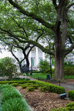 Oaks by Southern Home Stock Image
