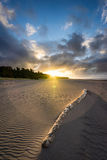 Oakura strand Arkivbild