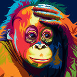 Oang utan vector Stock Photos