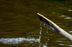 Oar. An oar of a rowing boat dripping water Stock Images