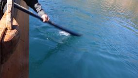 Oars on the azure lake stock footage