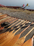 Oars for a dragonboat competition Royalty Free Stock Images